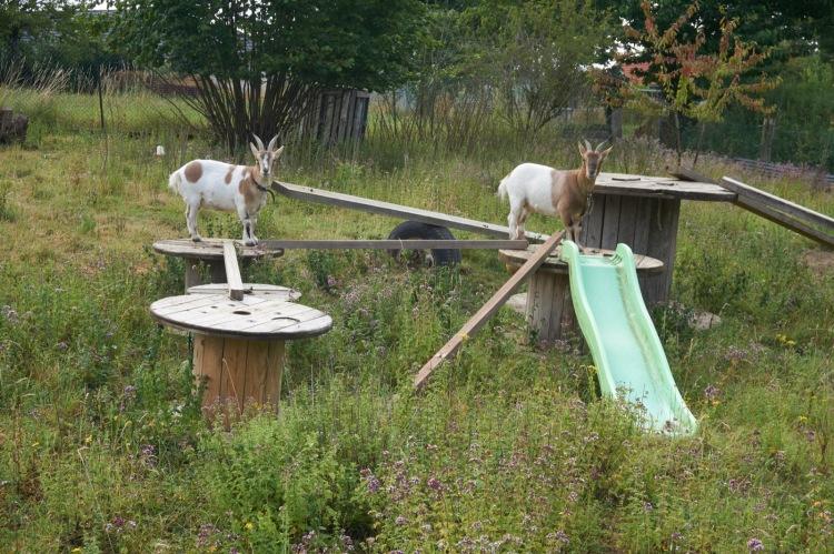 Accueillir des pèlerins dans son jardin : Check !